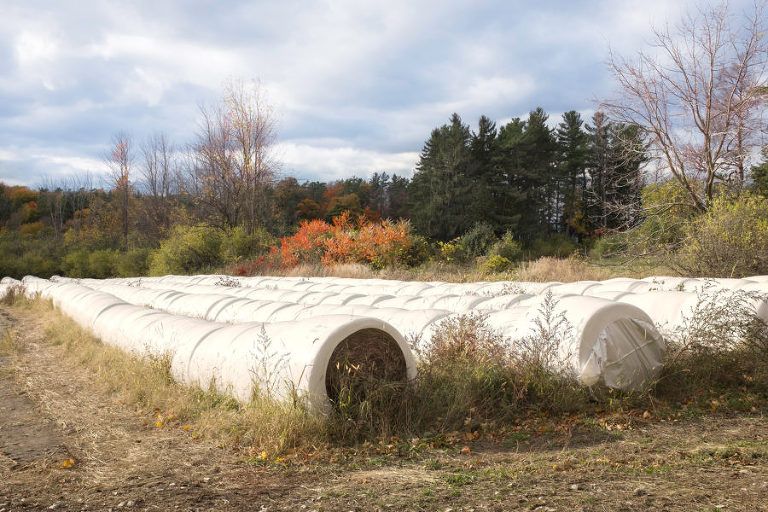 Horizontal silos (basically giant rolls of plastic wrap) store hay, replacing vertical silos that were popular from the late part of the 19th through a good part of the 20th centuries.